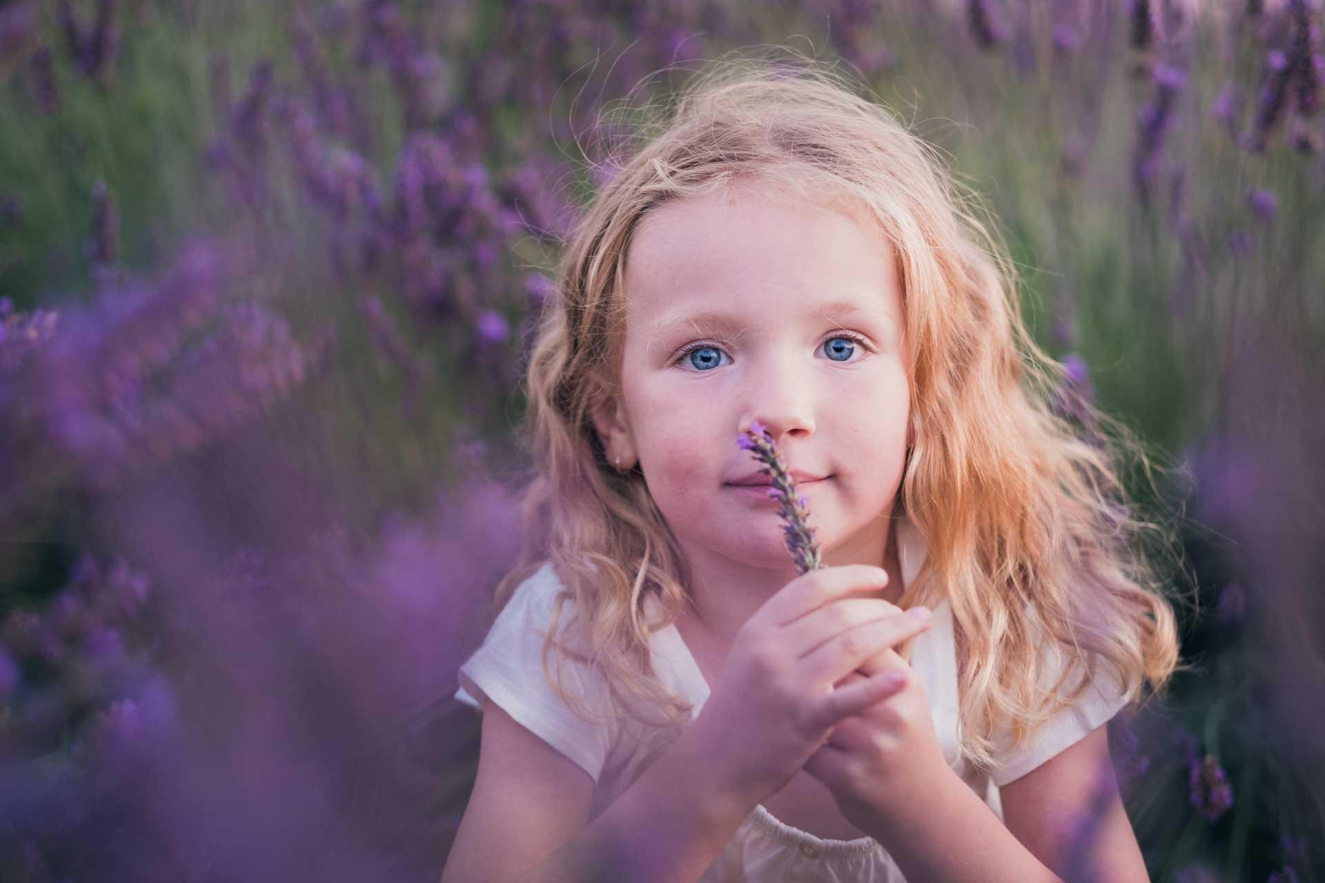 petite fille blonde aux yeux bleus assise dans un champ de lavande qui sent une fleur devant son nez