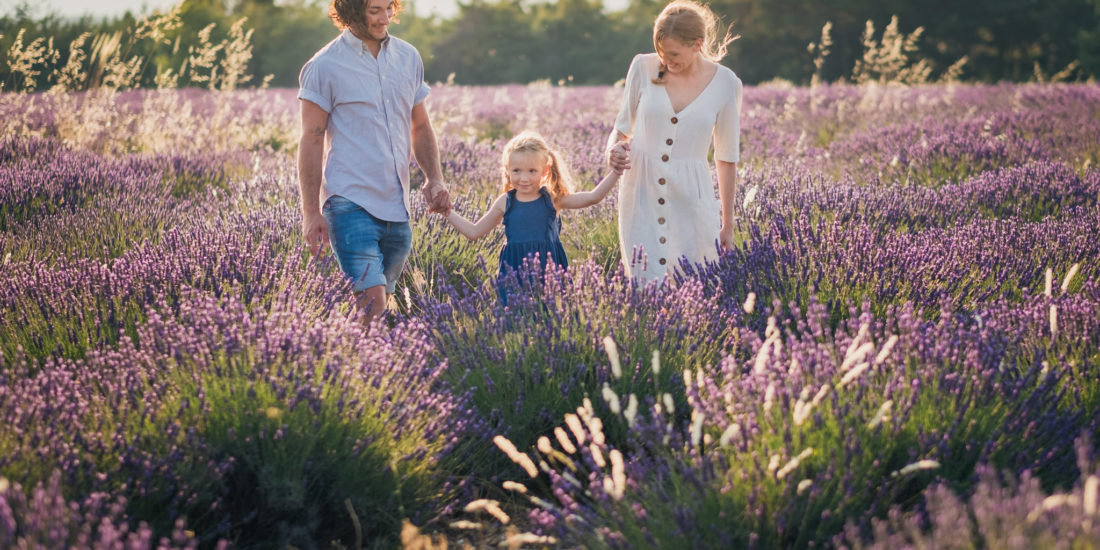 Famille dans un champs de lavandes